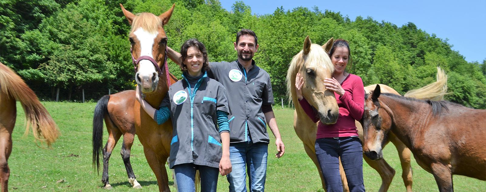 Equipe de vétérinaires équine