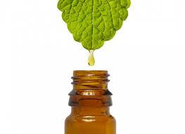 Vétérinaire médecine alternative aromathérapie : médecine par les huiles essentielles