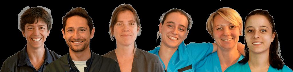 Equipe vétérinaire médecine alternative et traditionnelle NaturOpattes à Vienne près d'Annonay (07)
